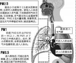 雾霾会影响生殖能力改变人体免疫结构
