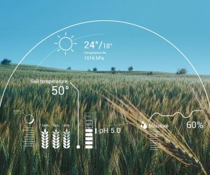 农业农村部、中央网信办:加快农业人工智能研发应用